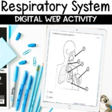 Respiratory System Digital Distance Learning Activity