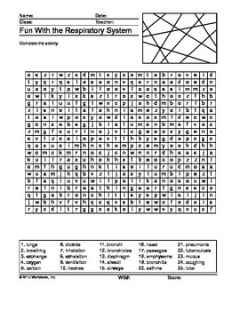 Respiratory System Word Search Printable