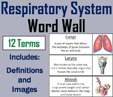 Respiratory System Word Wall Cards