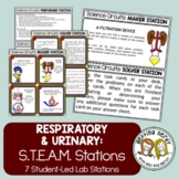 Respiratory & Urinary Systems - Science Centers / Lab Stations