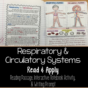 Respiratory and Circulatory Reading Comprehension Interactive Notebook