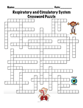 Respiratory and Circulatory System Crossword Puzzle by Brighteyed ...