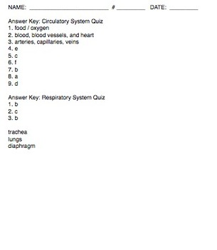 Respiratory and Circulatory System Quizzes