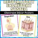 Respiratory and Excretory System Classroom Decor Science Posters