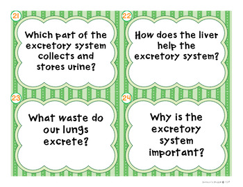 Respiratory and Excretory System Digital and Printable Task Card Review Activity