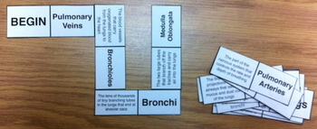 Respiratory system body dominoes game test review vocab words 5 6 7 8th jr high