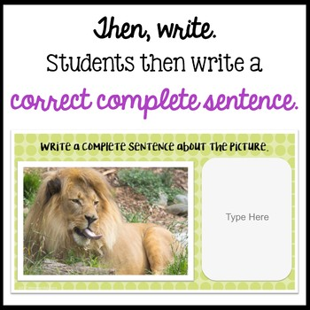 Respond to a Picture Prompt BIG CATS Sentence Writing Google Classroom