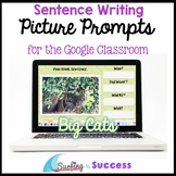 Respond to a Picture Prompt BIG CATS Sentence Writing Goog