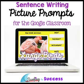 Respond to a Picture Prompt LARGE BIRDS Sentence Writing for the Google