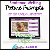 Respond to a Picture Prompt MONKEYS & APES Sentence Writin