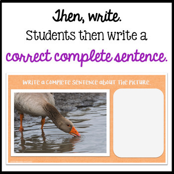 Respond to a Picture Prompt POND THEME Sentence Writing for the Google