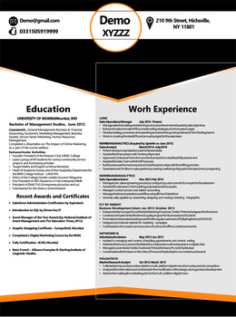 Resume Template for MS Word - White and Black