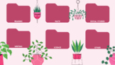 Retro Pink Plant Succulent Academic Subject Desktop Wallpa