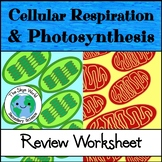 Review - Cellular Respiration and Photosynthesis Worksheet