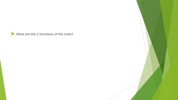 Review PowerPoint for Plant Parts and Functions