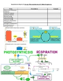 Review Sheet: Photosynthesis and Cellular Respiration