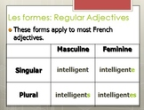 Review of French Adjectives