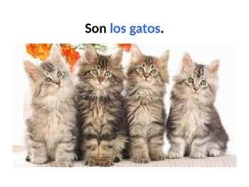 Review of pets in Spanish ppt