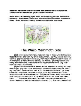 "Revise and Edit Practice, ""Rope Swing, No Problem"" & ""The Waco Mammoth Site"""