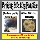 """Revising and Editing Practice, """"The Desperate Situation"""" a"""