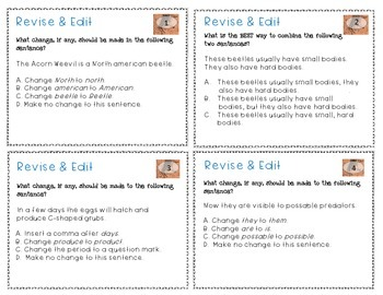 Revising and Editing Task Cards