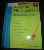 Revision Mini-Lessons Writing reflections