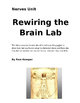 Rewiring the Brain with Prism Glasses Lab