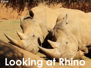 African Animals: Rhino - PDF Presentation