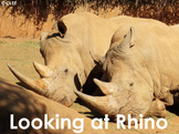 African Animals: Rhino - PDF Presentation