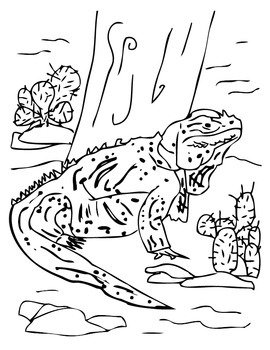 ANiTAiLS:Rhinoceros Iguana Story, Crossword, Coloring Page and More