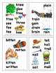 Rhyming Word Families Mini Book for K-1 in Color