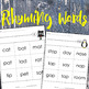 Rhyming Words Worksheets Based on Dr. Suess Word Families