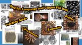 Rhythm, Pattern, and Copper Foil Unit