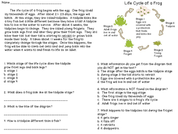 Ri 2.7 Assessment / Practice using Diagrams to clarify a text