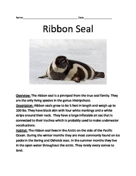 Ribbon Seal - review article questions facts information vocabulary