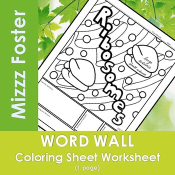Ribosomes Word Wall Coloring Sheet