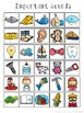 Right Brain Phonics Summary Sheets