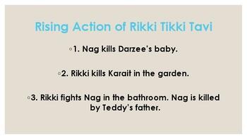 Rikki Tiki Tavi and PLOT