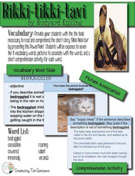 Rikki-tikki-tavi Vocabulary PowerPoint {Editable}