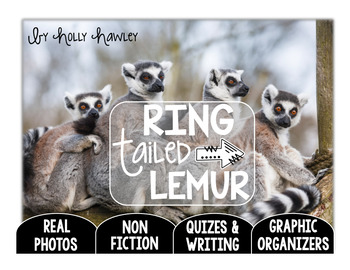 Ring Tailed Lemur-A Research Project