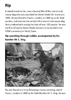 Rip the Blitz rescue dog - The PDSA Dickin Medal Handout
