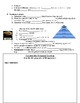 Rise of Civilization and Mesopotamia Guided Lecture Notes Handout