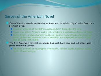 Rise of the American Novel