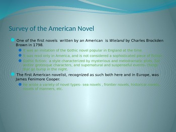 Rise of the American Novel