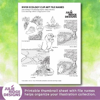 River Ecology Clip Art Set