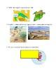 River Valley Civilization Vocabulary