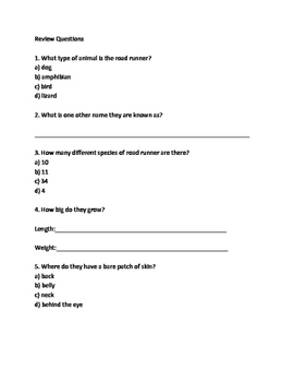 Road Runner - Bird facts information review article questions vocab