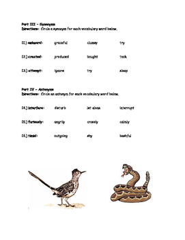 McGraw Hill Wonders - 3rd Grade - Roadrunner's Dance Vocabulary Resources