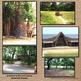 Roanoke, the Lost Colony