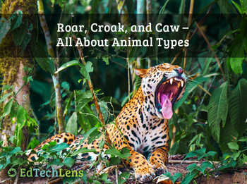 Roar, Croak, and Caw - All About Animal Types EPUB